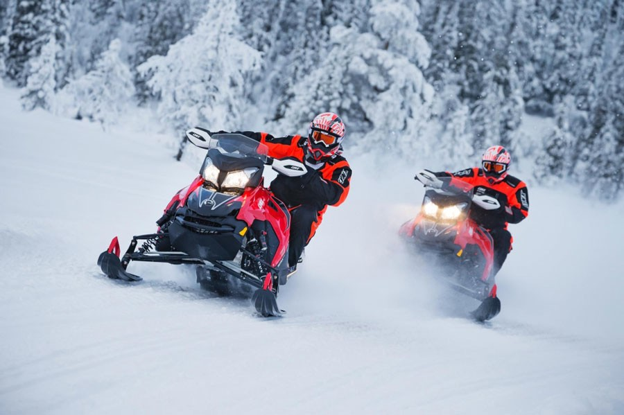 Snowmobile Safari 2 Hour