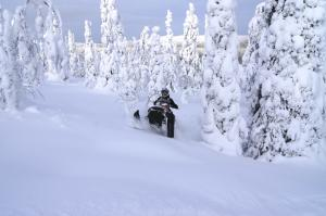 Lapland Explorer Tour Packages