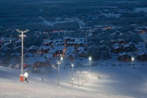 Holiday Tour In Finnish Lapland