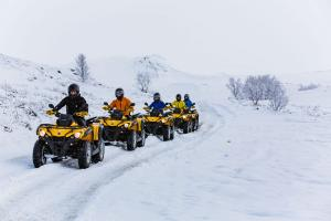 Tourists on Snowmobile