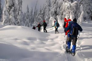 Tourists trying snowshoeing in Lapland