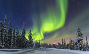 Northern Lights with snow